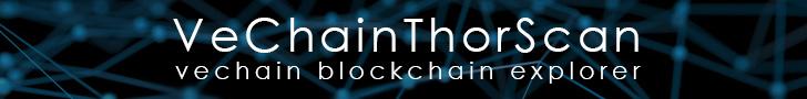 VeChain blockchain explorer